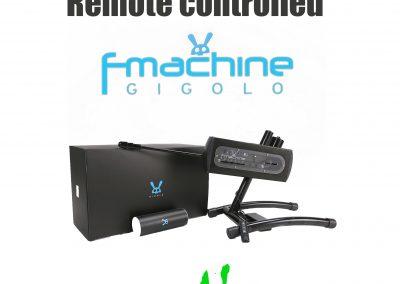 Gigolo Fmachine remote contr.
